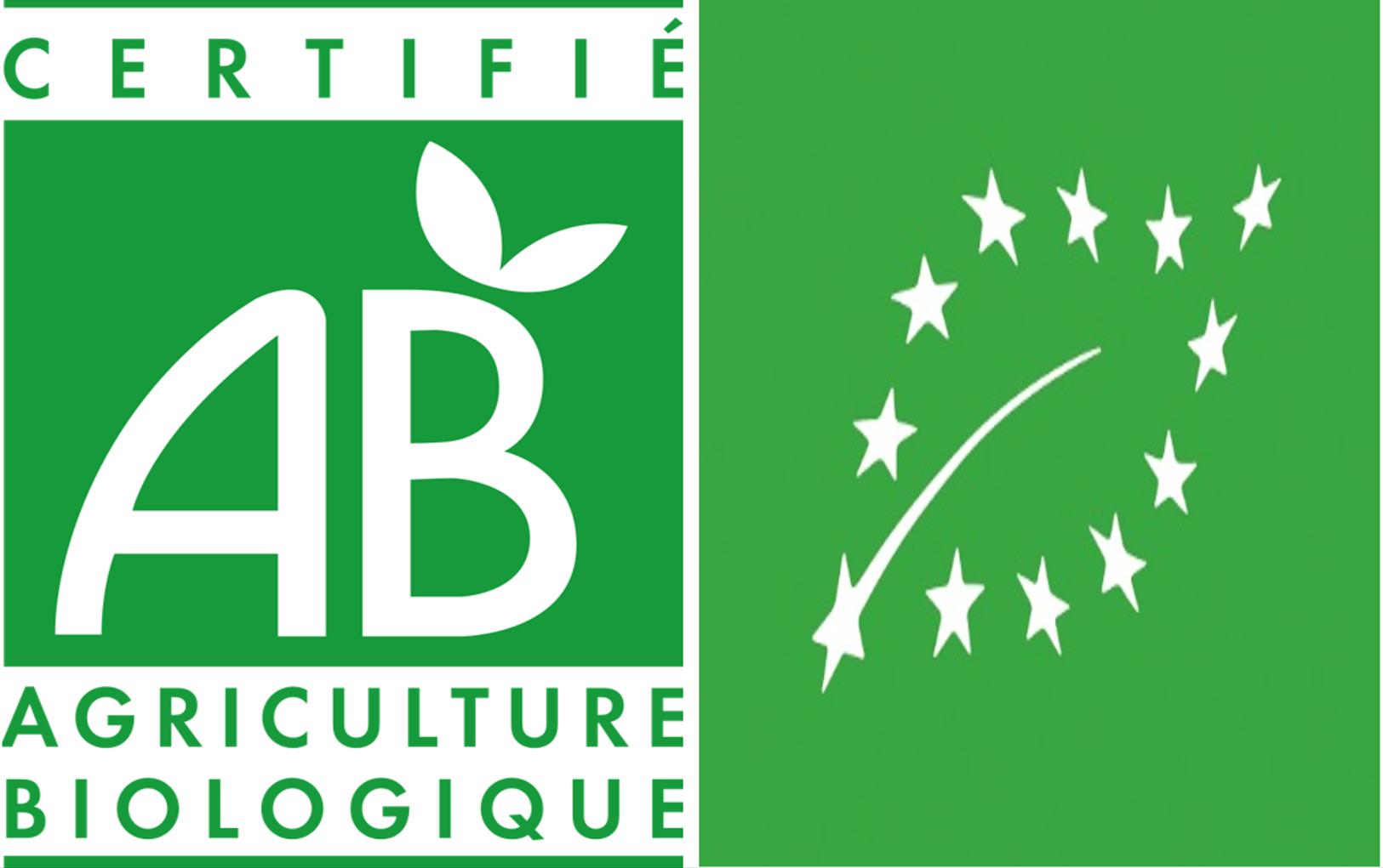 Logo_Bio_2.png